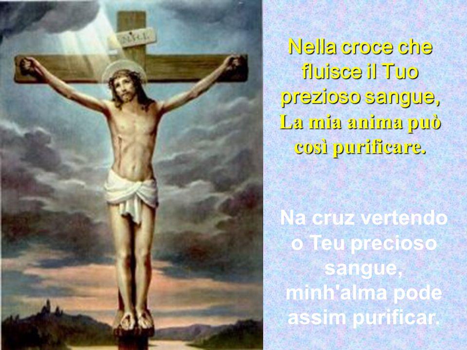 Nella croce che fluisce il Tuo prezioso sangue,