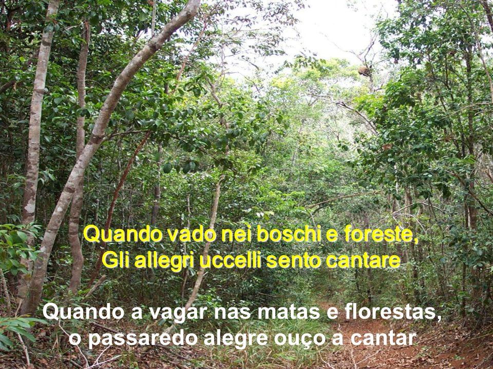 Quando vado nei boschi e foreste, Gli allegri uccelli sento cantare