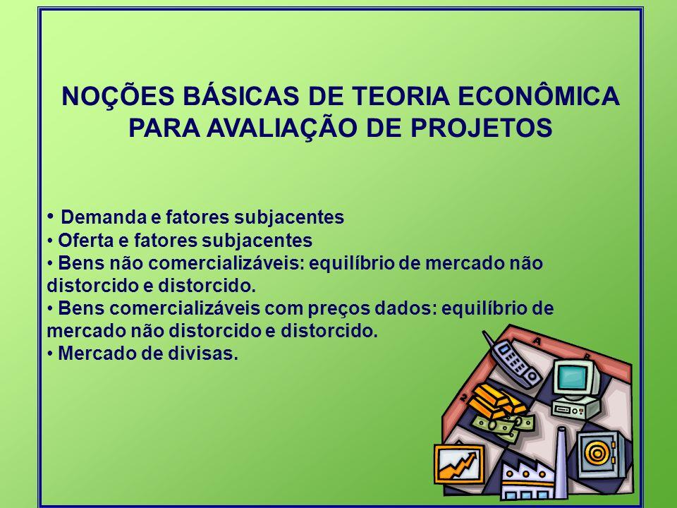 NOÇÕES BÁSICAS DE TEORIA ECONÔMICA PARA AVALIAÇÃO DE PROJETOS