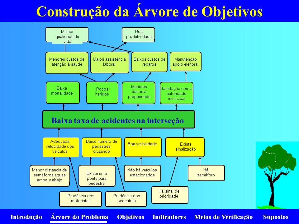 Construção da Árvore de Objetivos