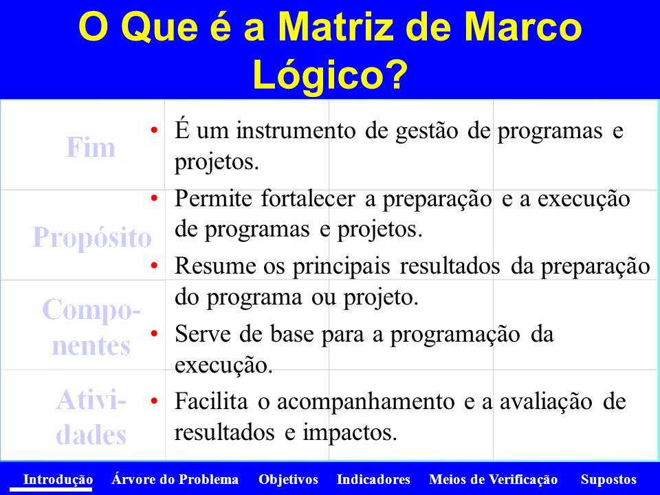 O Que é a Matriz de Marco Lógico