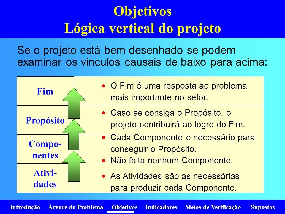 Objetivos Lógica vertical do projeto