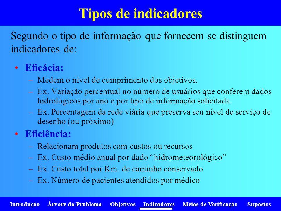 Tipos de indicadores Segundo o tipo de informação que fornecem se distinguem indicadores de: Eficácia: