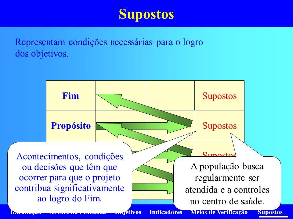 Supostos Representam condições necessárias para o logro dos objetivos.