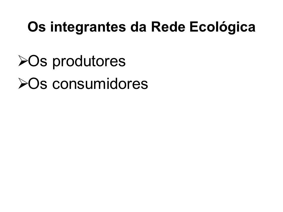 Os integrantes da Rede Ecológica