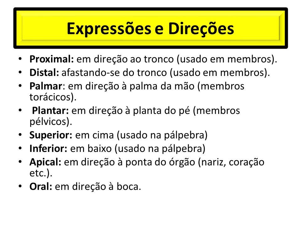 Expressões e Direções Proximal: em direção ao tronco (usado em membros). Distal: afastando-se do tronco (usado em membros).