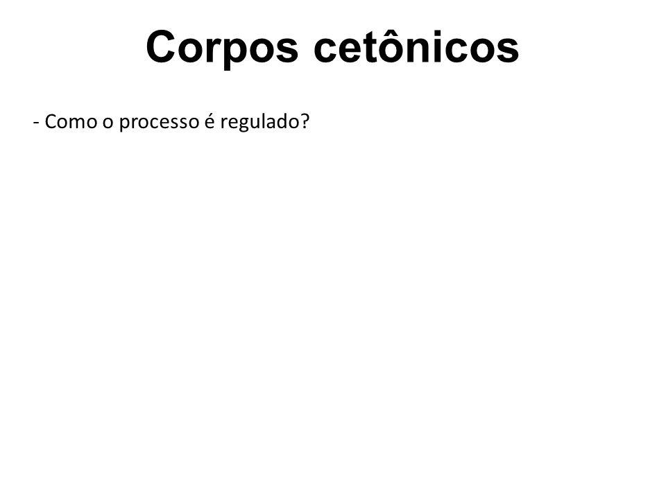 Corpos cetônicos - Como o processo é regulado