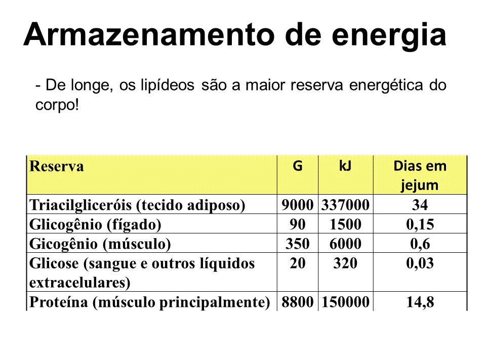 Armazenamento de energia
