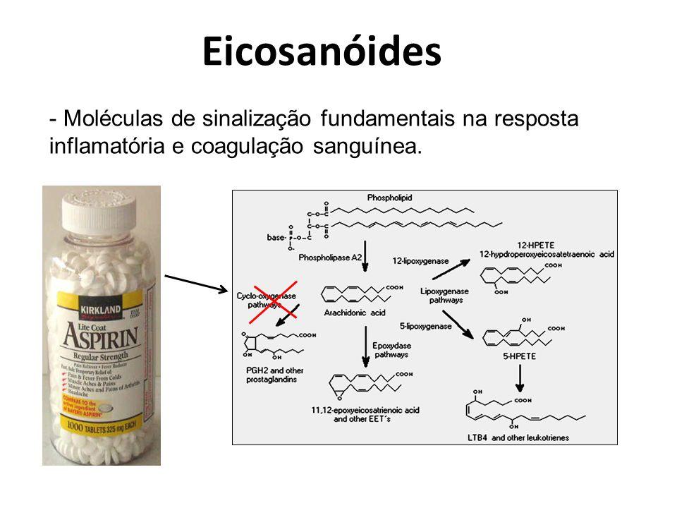 Eicosanóides Moléculas de sinalização fundamentais na resposta inflamatória e coagulação sanguínea.