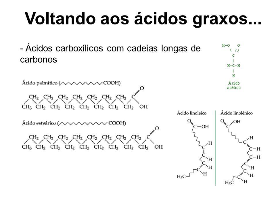 Voltando aos ácidos graxos...