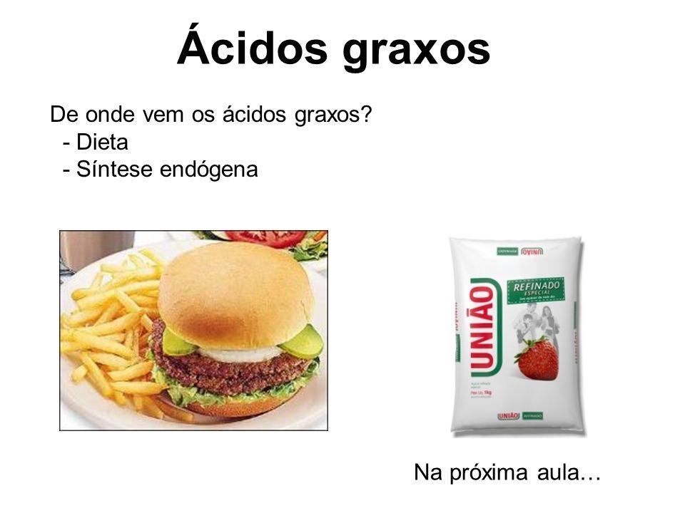 Ácidos graxos De onde vem os ácidos graxos - Dieta - Síntese endógena