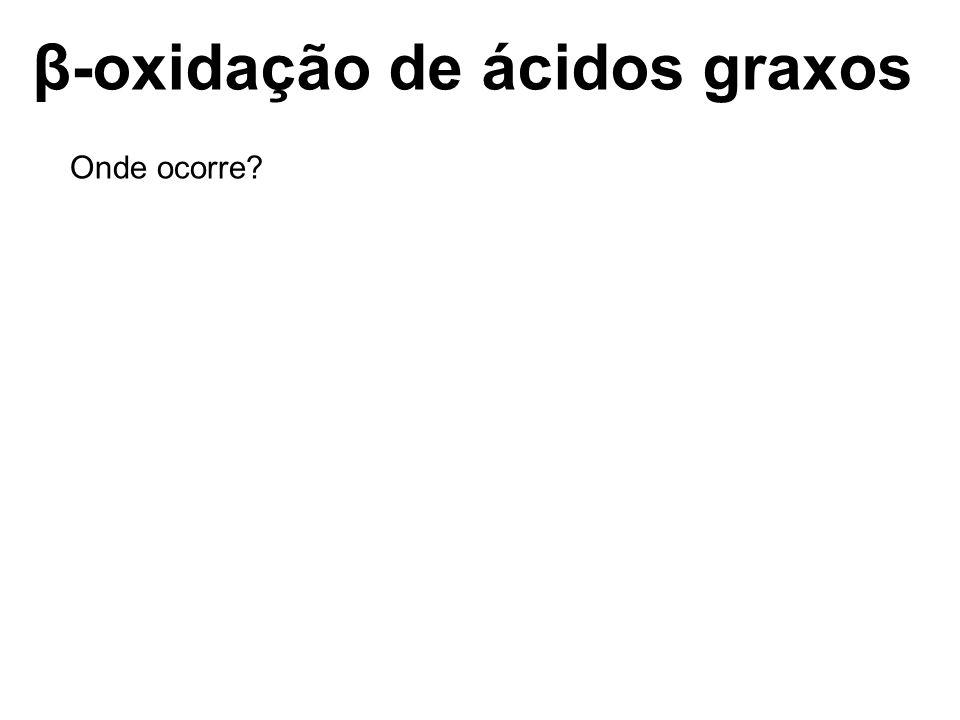β-oxidação de ácidos graxos