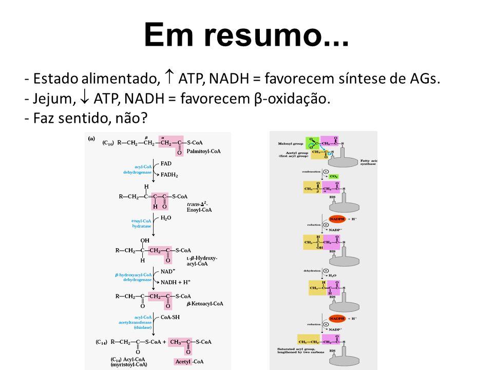 Em resumo... Estado alimentado,  ATP, NADH = favorecem síntese de AGs. Jejum,  ATP, NADH = favorecem β-oxidação.