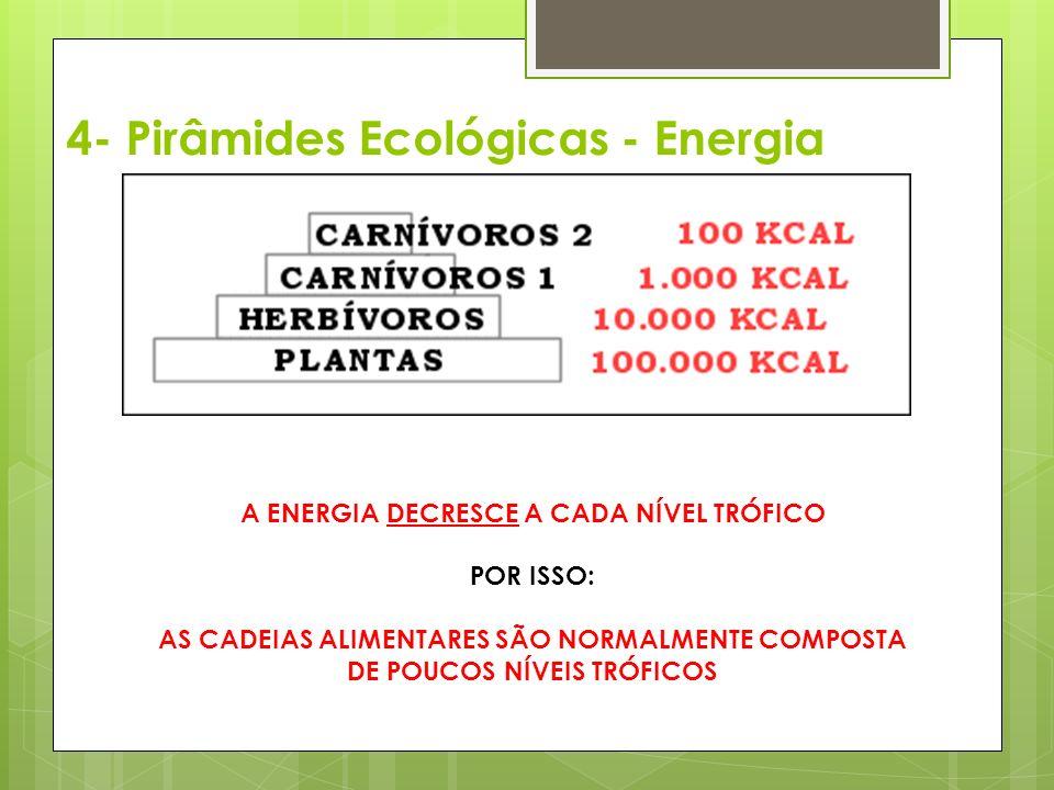 A ENERGIA DECRESCE A CADA NÍVEL TRÓFICO