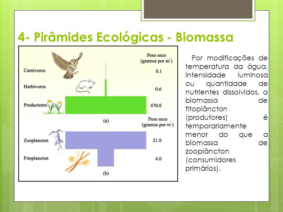 4- Pirâmides Ecológicas - Biomassa