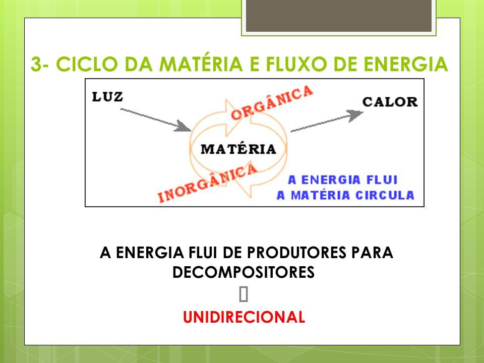 A ENERGIA FLUI DE PRODUTORES PARA DECOMPOSITORES Þ UNIDIRECIONAL