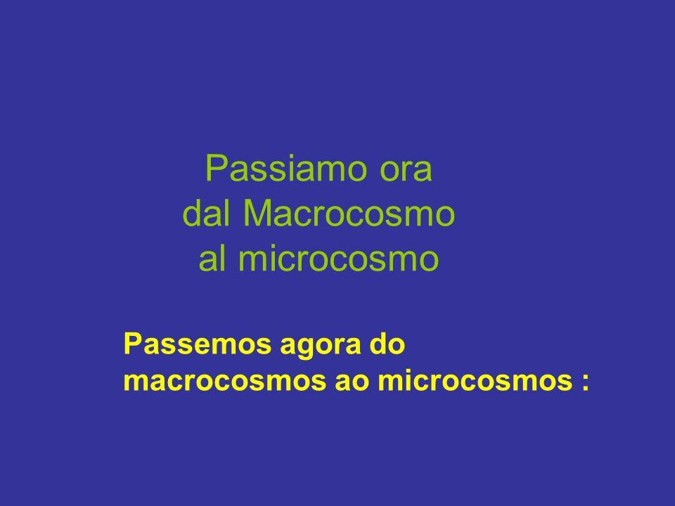 Passiamo ora dal Macrocosmo al microcosmo