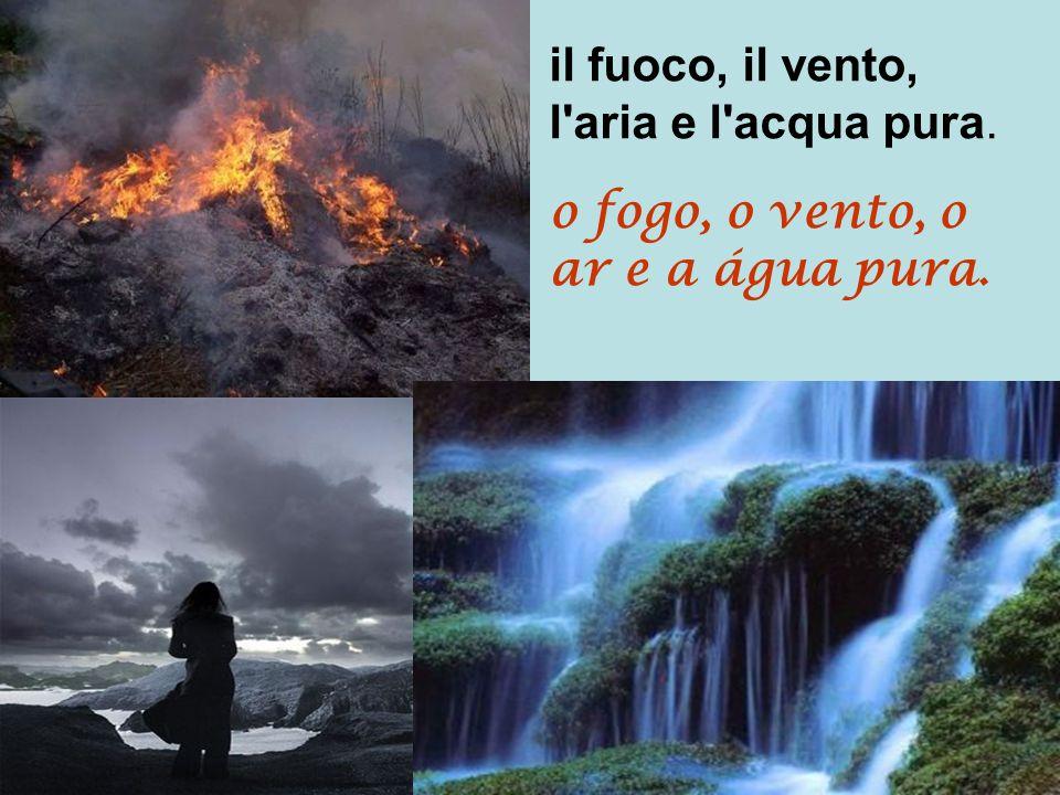 il fuoco, il vento, l aria e l acqua pura.