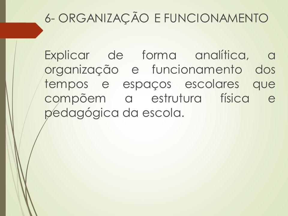 6- ORGANIZAÇÃO E FUNCIONAMENTO