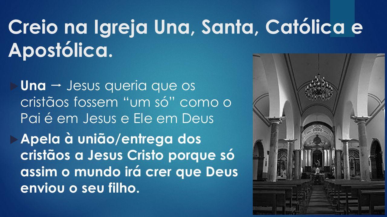 Creio na Igreja Una, Santa, Católica e Apostólica.