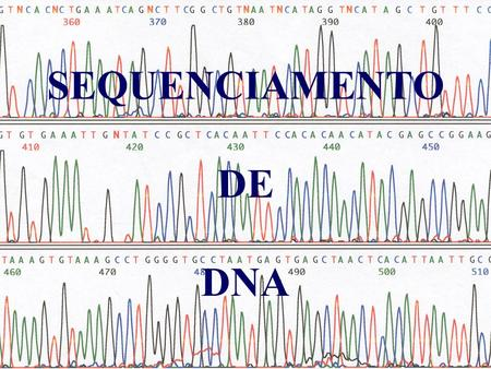 SEQUENCIAMENTO DE DNA.