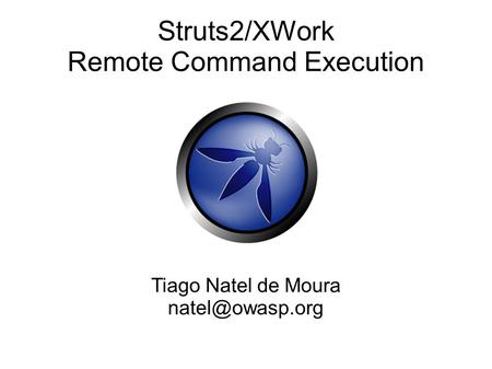 Struts2/XWork Remote Command Execution