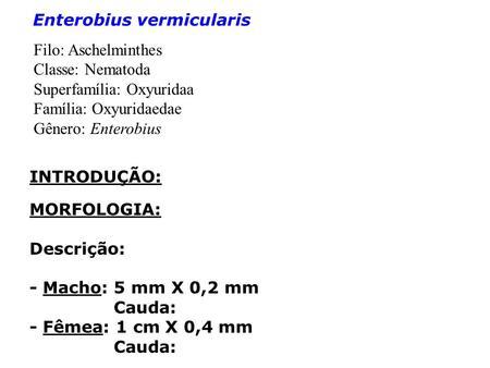 vestibularis papillomatosis vagy genitális szemölcsök modern féreghajtó szer