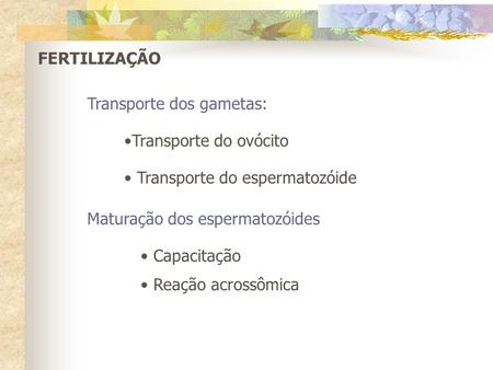 FERTILIZAÇÃO Transporte dos gametas: Transporte do ovócito