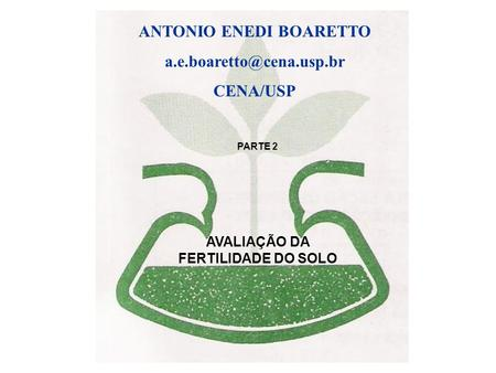 ANTONIO ENEDI BOARETTO