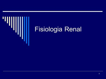 Fisiologia Renal.