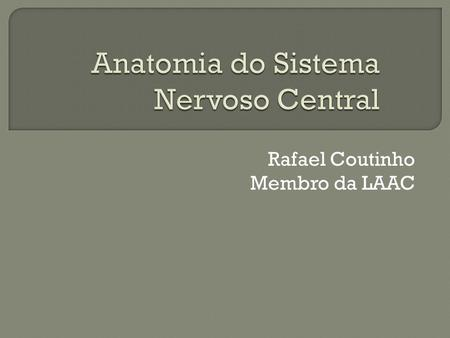 Anatomia do Sistema Nervoso Central