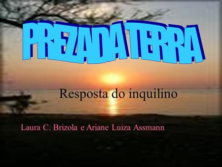 PREZADA TERRA Resposta do inquilino