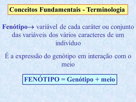 Conceitos Fundamentais - Terminologia