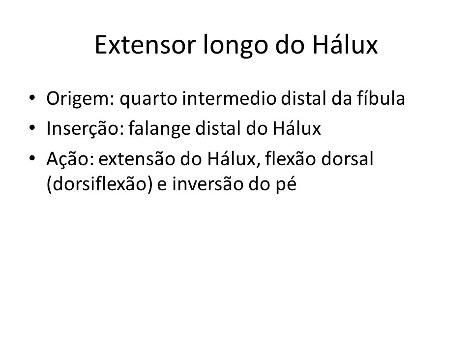 Extensor longo do Hálux