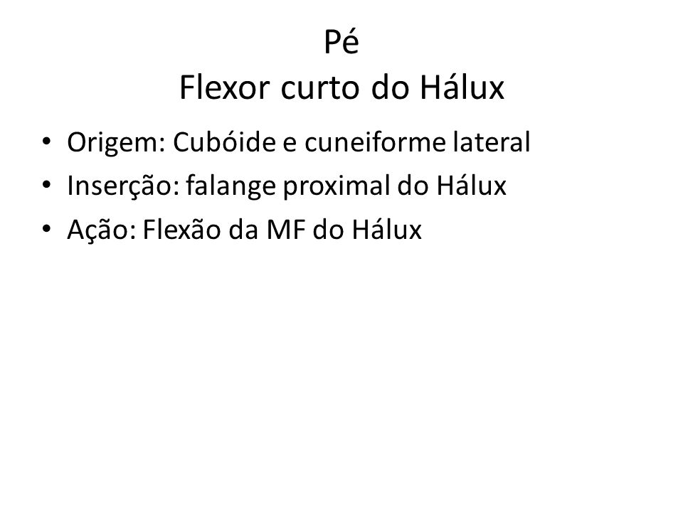 Pé Flexor curto do Hálux