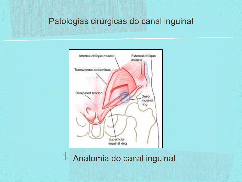 Patologias cirúrgicas do canal inguinal - ppt video online carregar