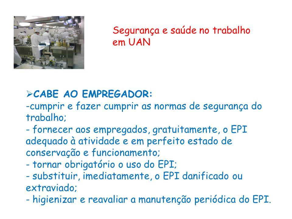 Segurança e saúde no trabalho em UAN - ppt carregar 6105265626