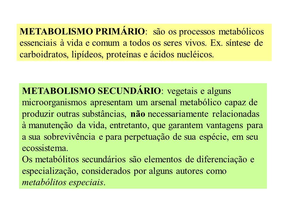 METABOLISMO BÁSICO E ORIGEM DOS METABÓLITOS SECUNDÁRIOS - ppt carregar