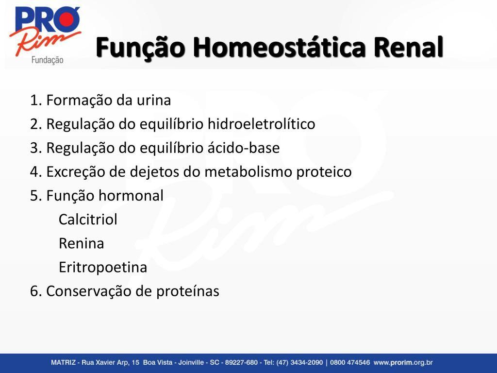 exame de urina e provas de função renal ppt video online carregarfunção homeostática renal