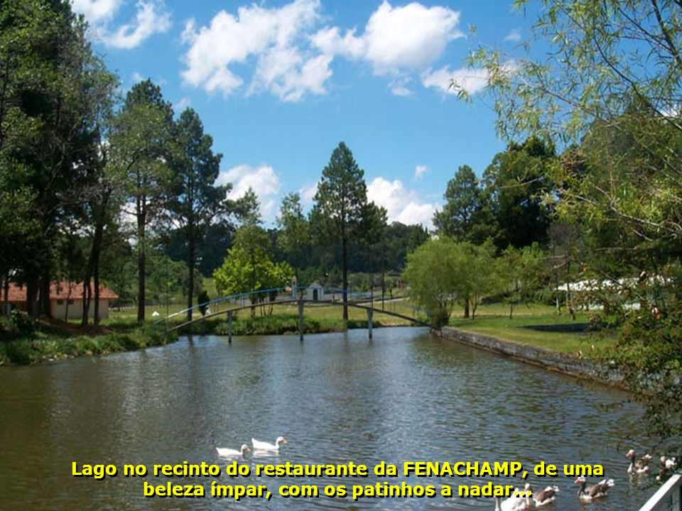 Lago no recinto do restaurante da FENACHAMP, de uma