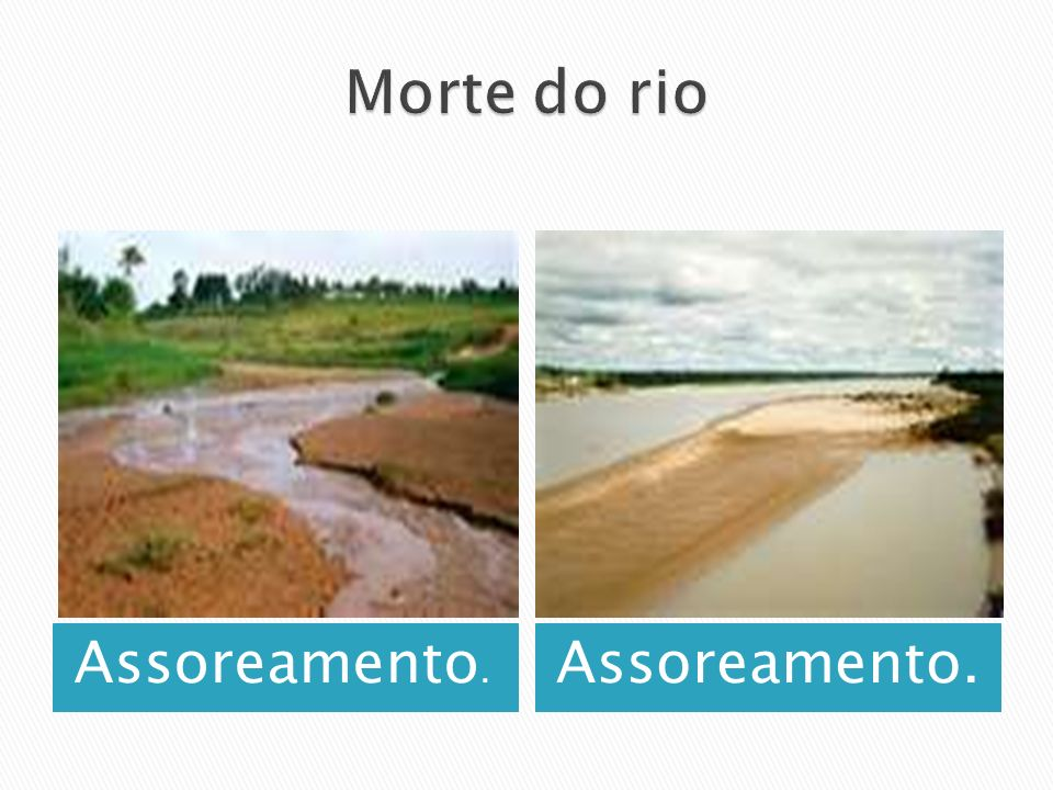 Morte do rio Assoreamento. Assoreamento.