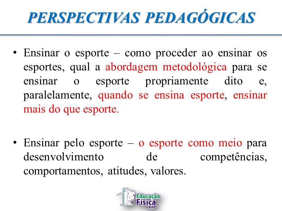 1252d4b14e Tema  Metodologia do Esporte Coletivo - ppt video online carregar