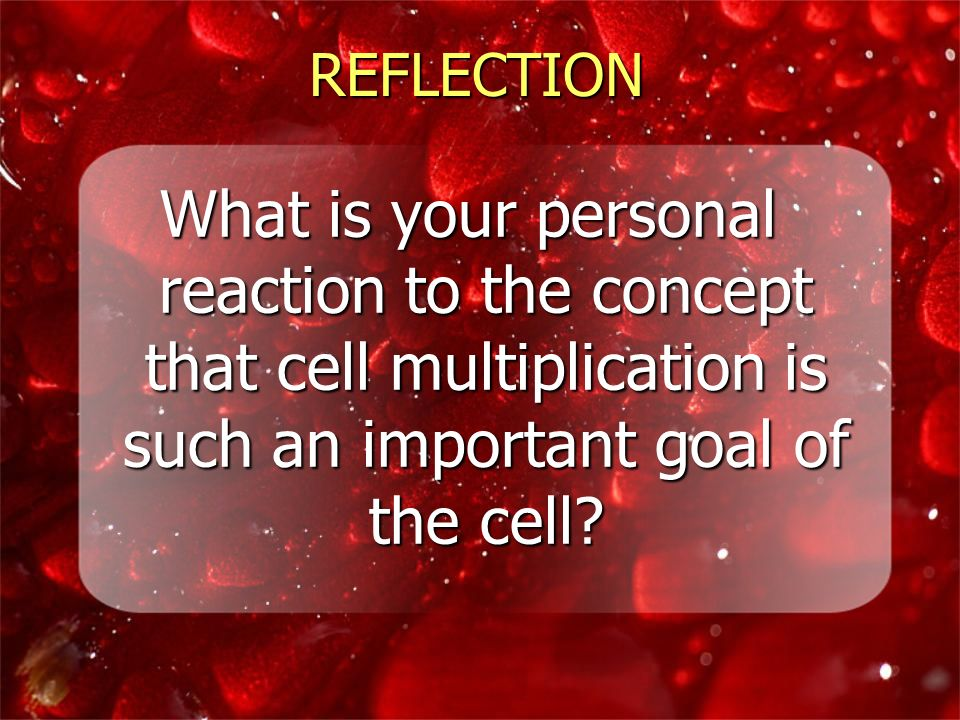 REFLECTION What is your personal reaction to the concept that cell multiplication is such an important goal of the cell