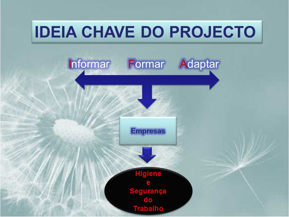 IDEIA CHAVE DO PROJECTO