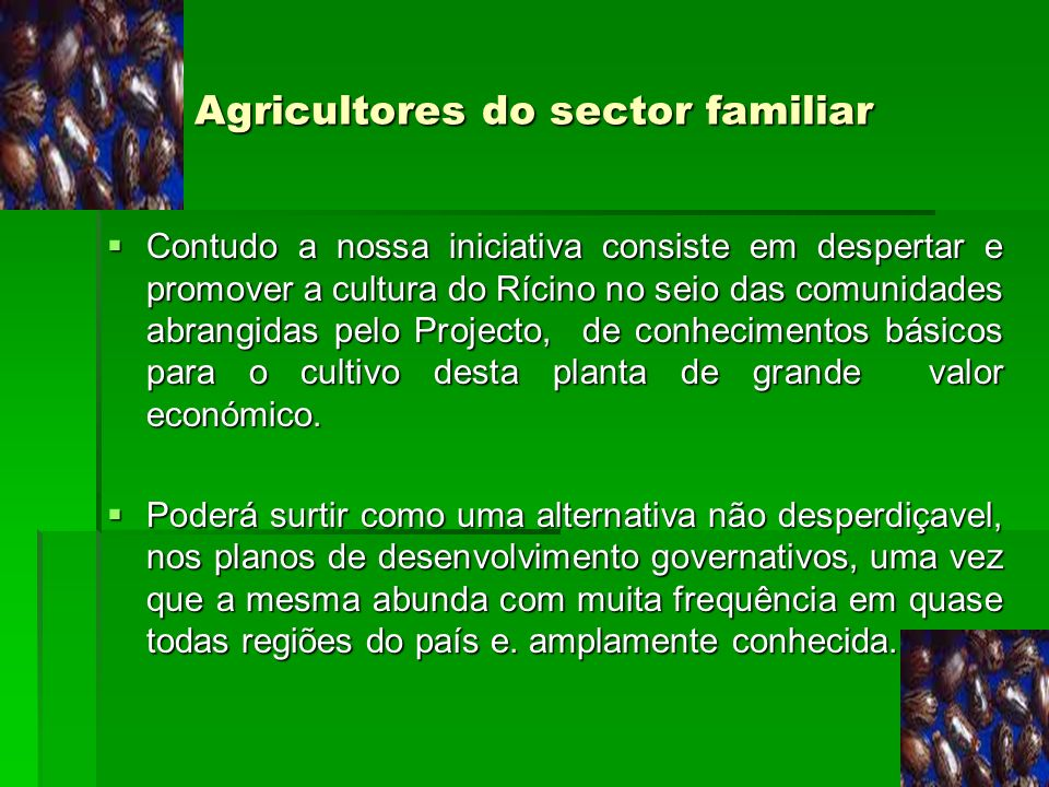 Agricultores do sector familiar
