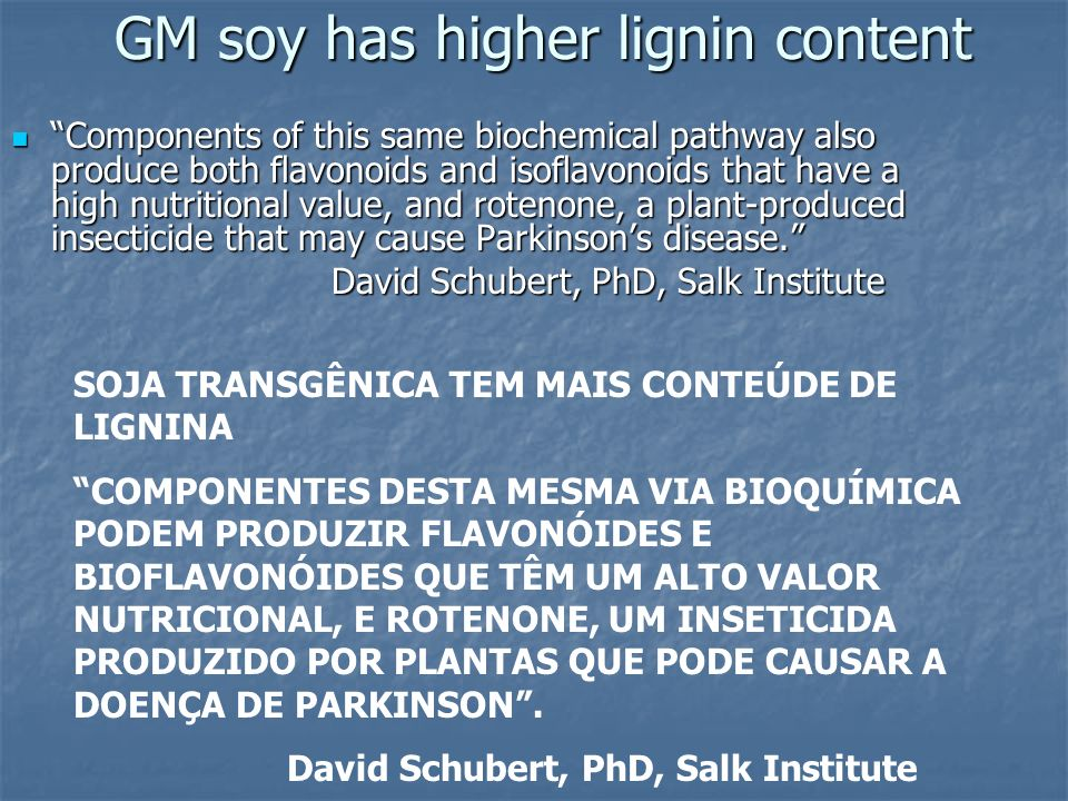 GM soy has higher lignin content