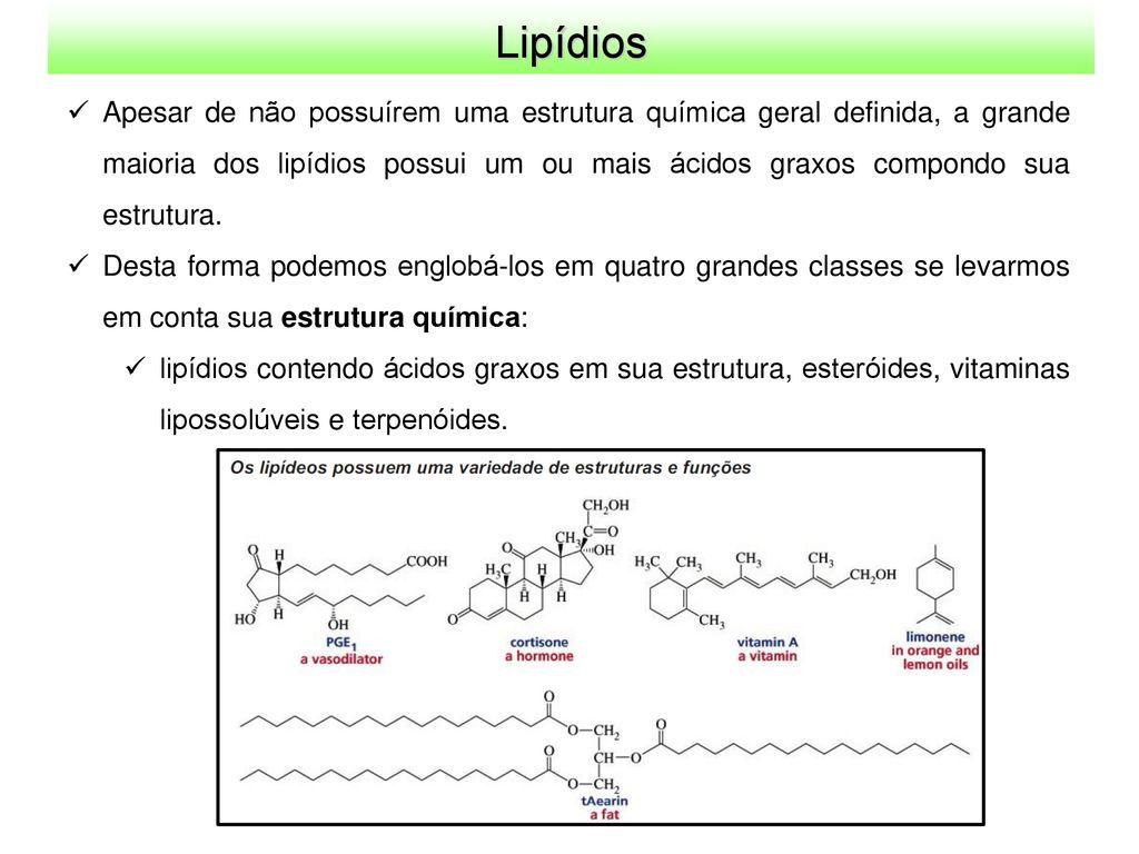 Lipídios A Classe Dos Lipídios Compreende Uma Grande