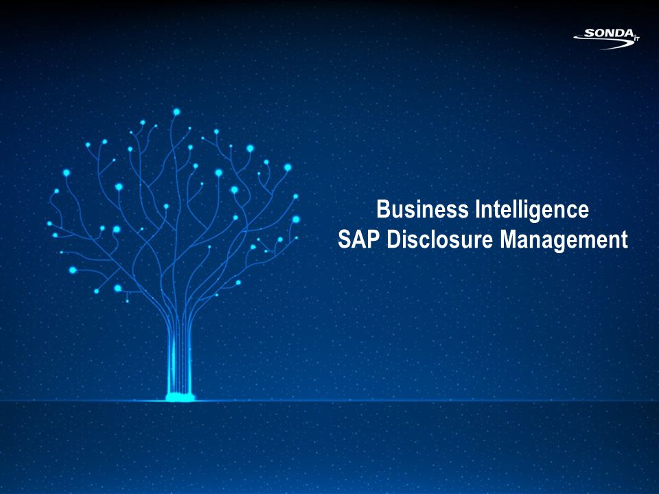 Business Intelligence SAP Disclosure Management
