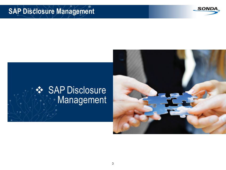SAP Disclosure Management
