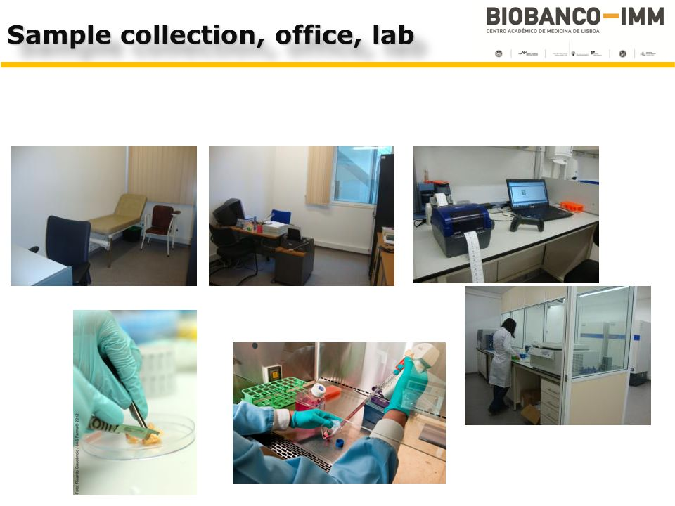 Sample collection, office, lab
